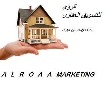 Company visions Consulting and Real Estate Marketing