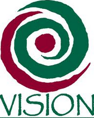 Vision Consulting insurance and media