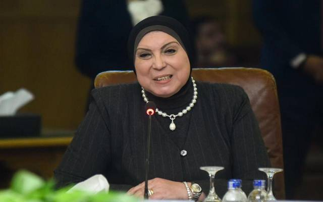 Egypt .. Implementing 216,000 micro-projects for young female graduates within 5 years
