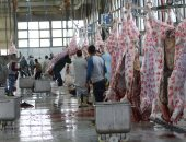 Agriculture: 151,000 livestock and 7.5 million slaughtered birds during 30 days