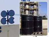 Energy Agency: Non-OPEC oil stocks and production protect the market from shocks
