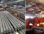 The government refuses to grant the Arab Steel Company an iron license