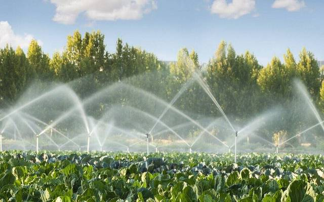 Egyptian agriculture illustrates the fact that the sale of irrigation water and damage some crops