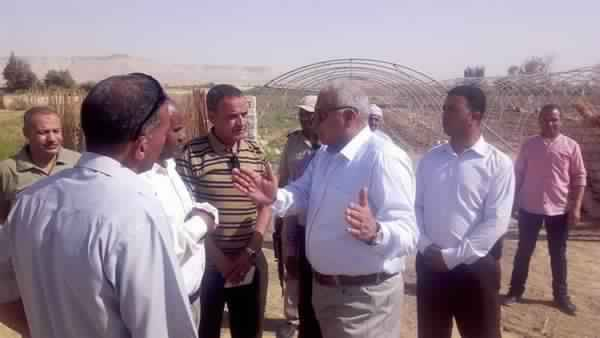 5 million pounds for the implementation of animal production project in Al-Farafra